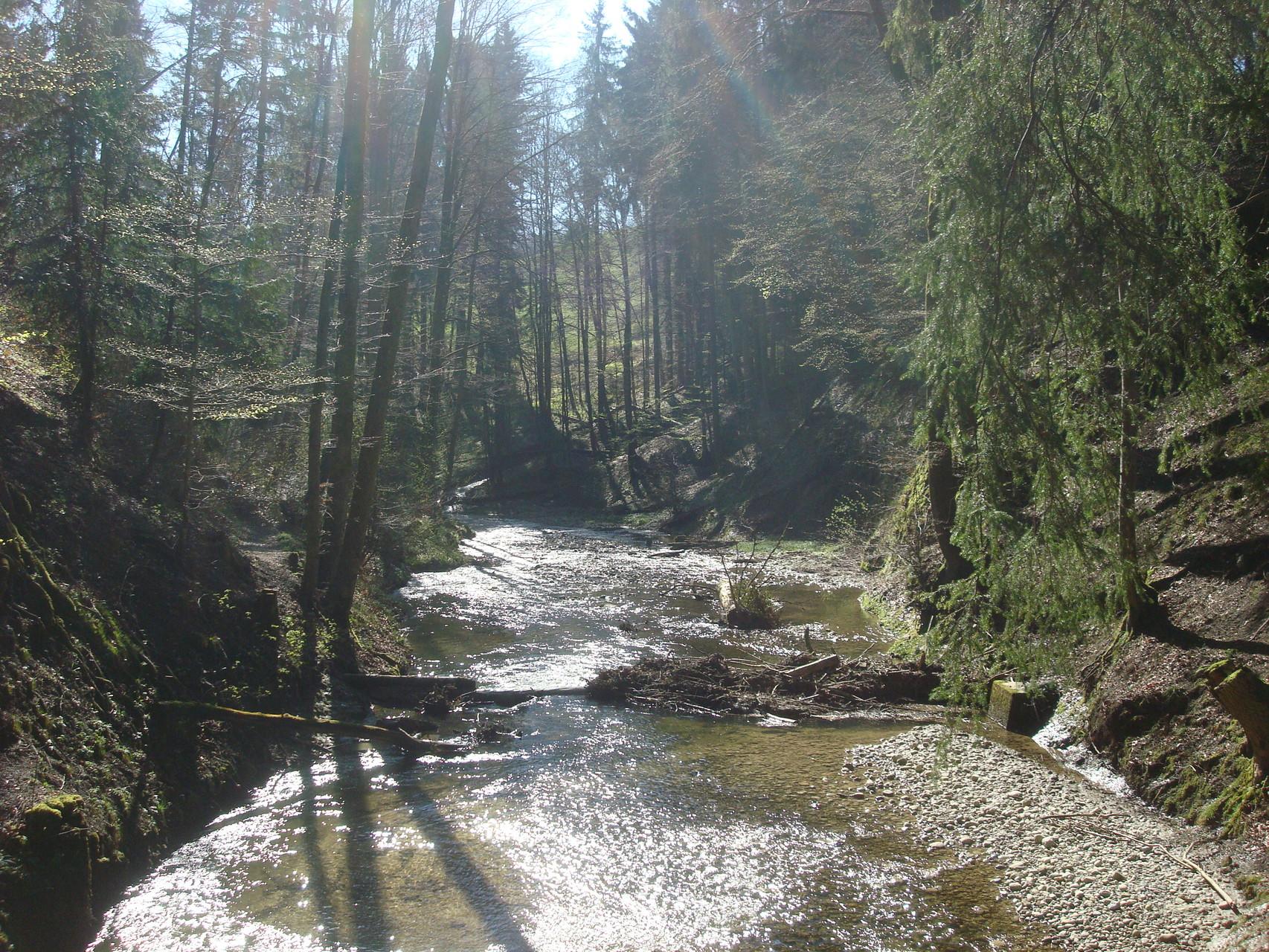 Wissbachschlucht