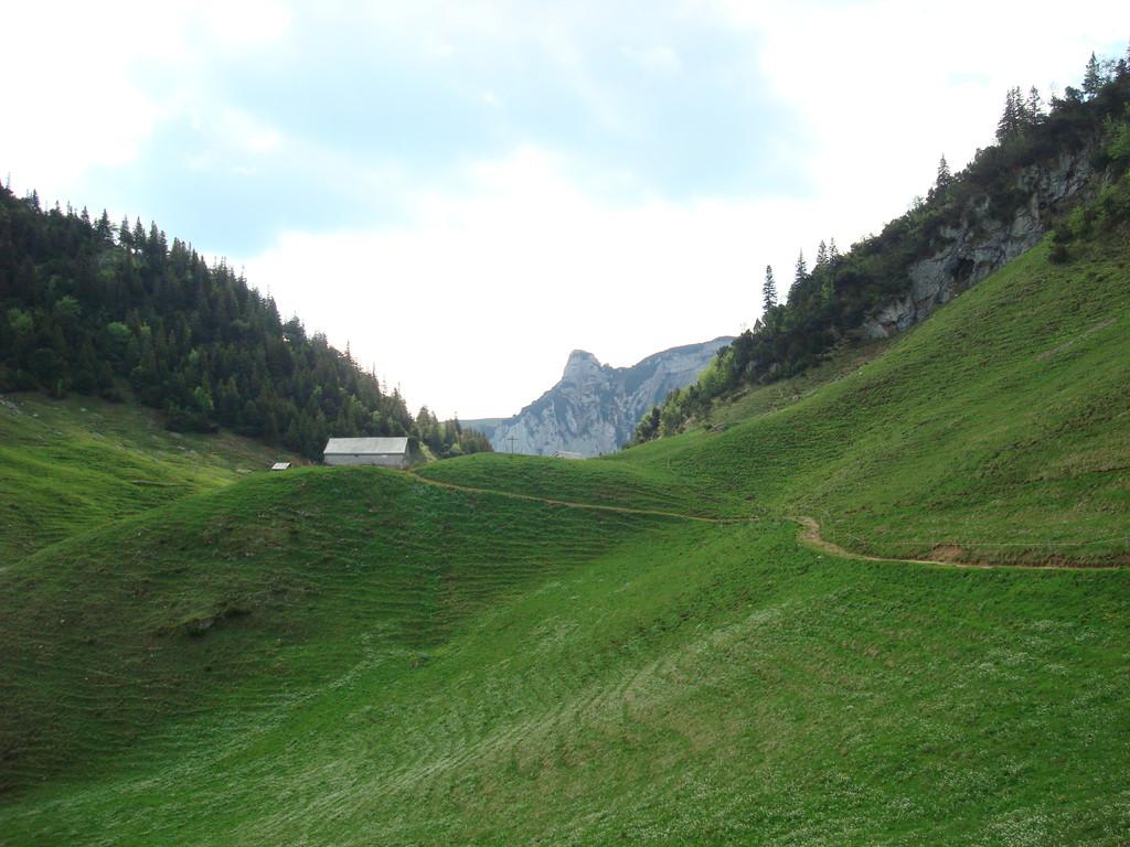 Alp Mans