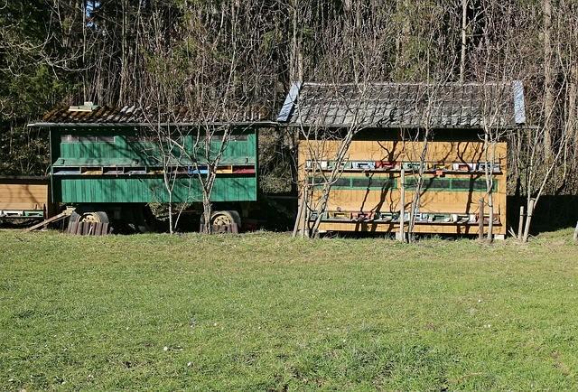Bienenwagen und Bienenhaus