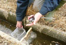 水モニタリング(毎月第二土曜日)