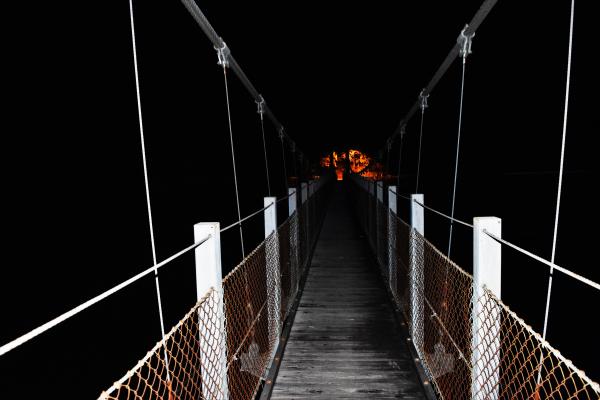 青谷ポケットパークのつり橋