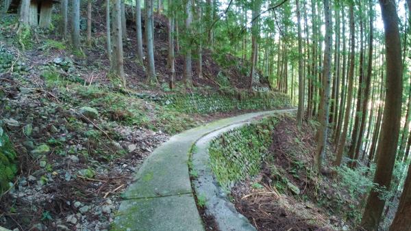 小和田駅と塩沢集落をつなぐ歩道