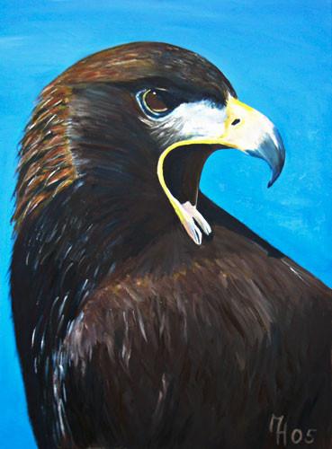 Adler, Öl auf Leinwand, 70 x 50cm
