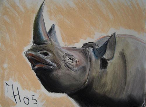 Nashorn, Pastelkreide auf Papier