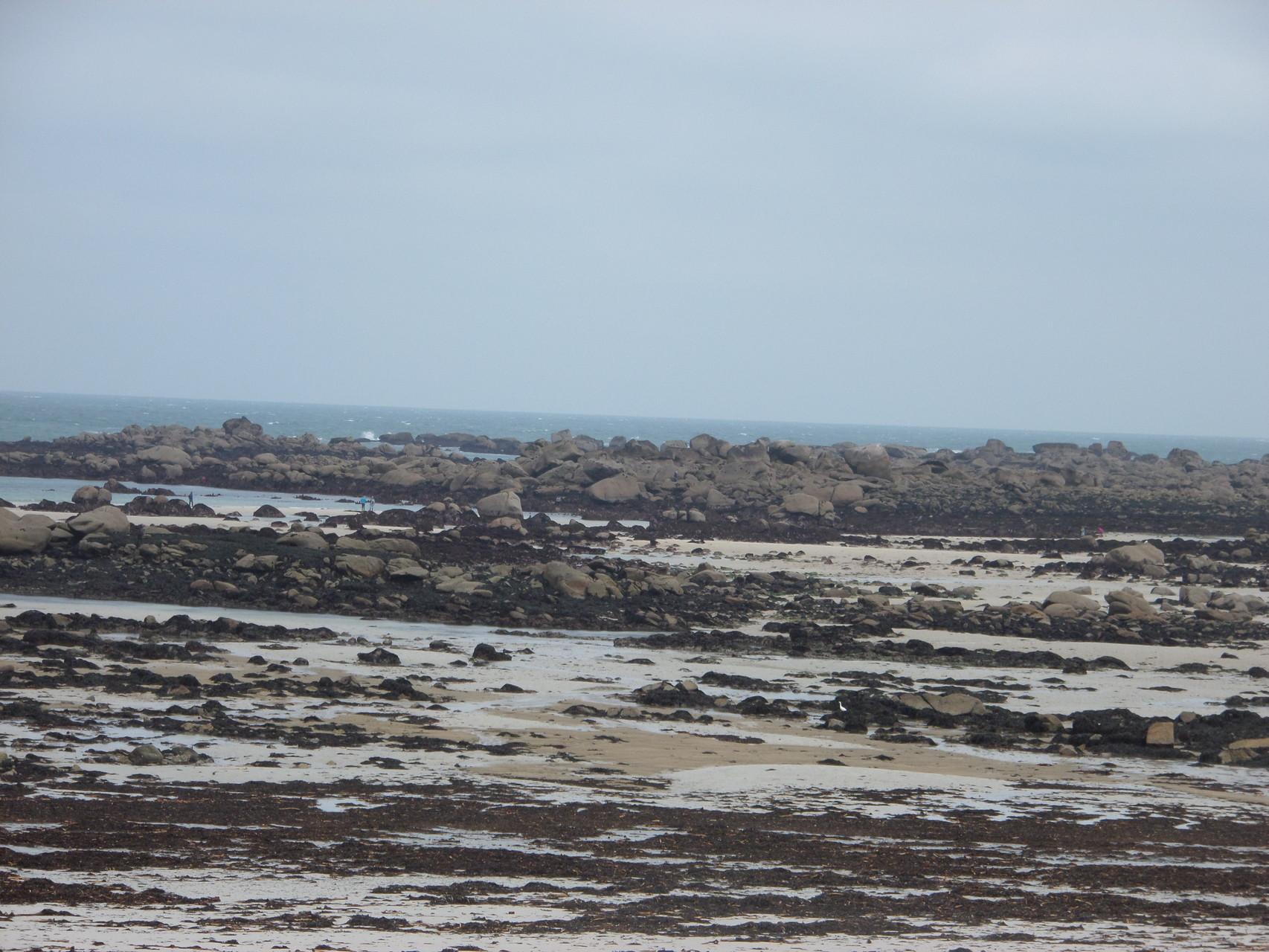 La côte rocheuse par grande marée - Kerlouan
