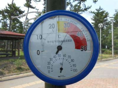 20200816気温30度超え