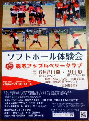 ソフトボール体験会チラシ