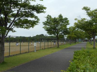 学童野球の練習試合も行われていました