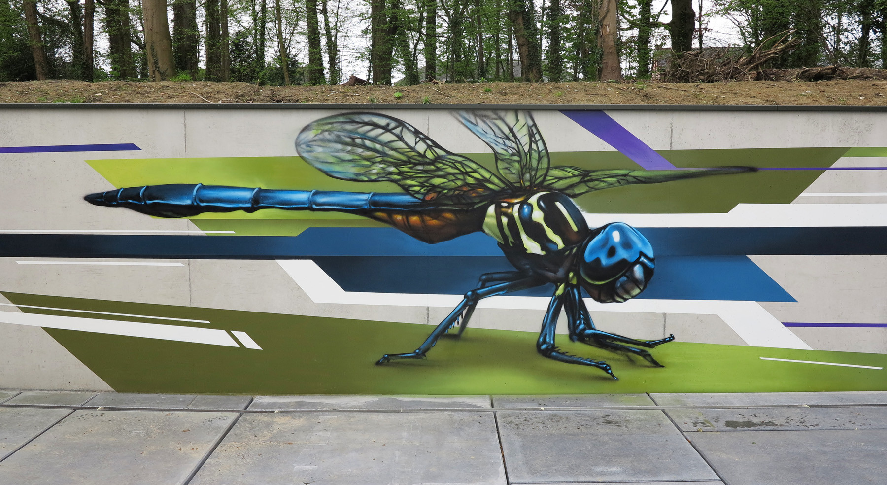 Dragonfly, Spray can on concrete, Mechelen, Belgium