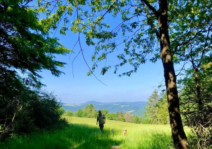 Schöne Natur pur in der Eifel
