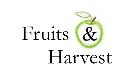 Jimdo Expert Full-Service Fruits & Harvest