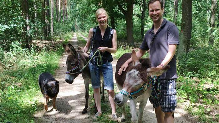 Eseltrekking beim Eselfreunde im Havelland e. V.