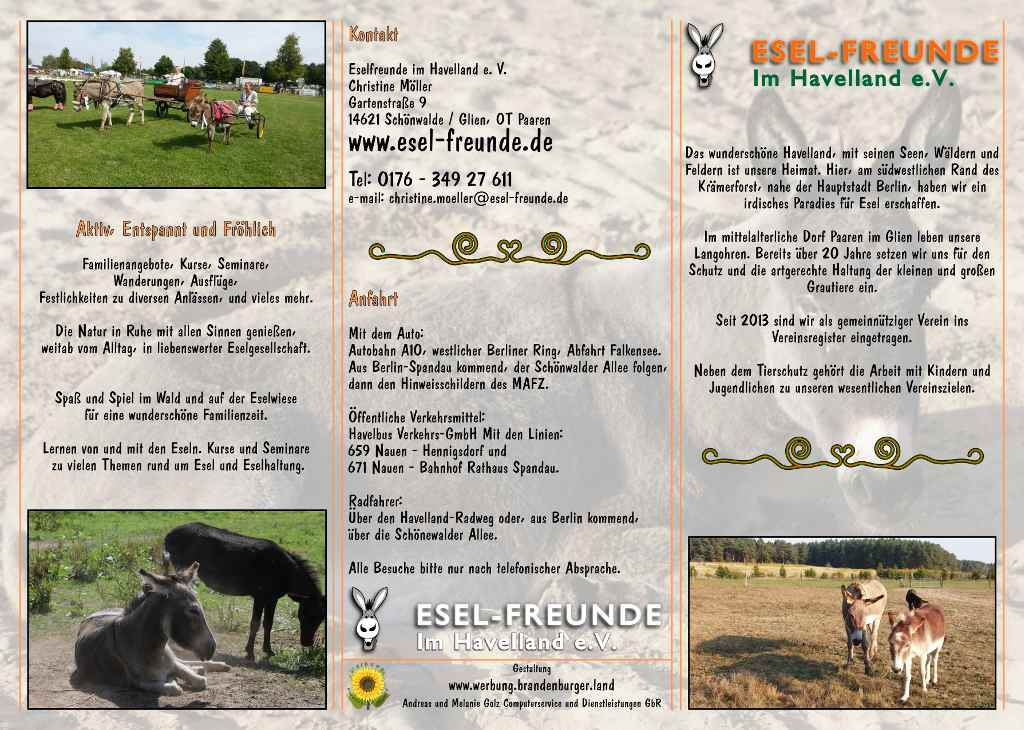 Esel-Workshop | Esel-Freunde Info-Flyer