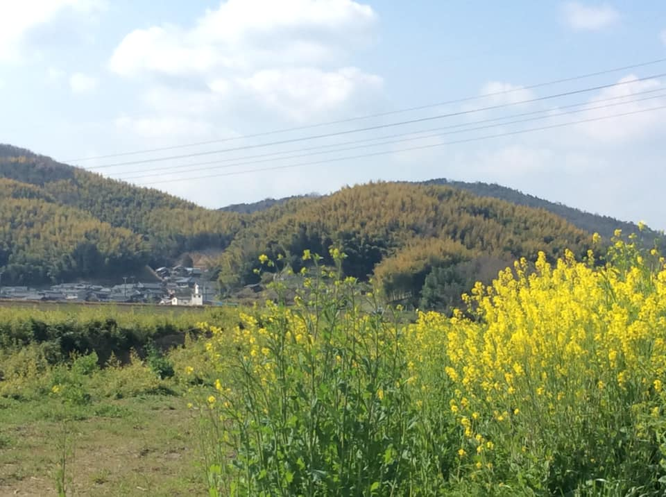岡山県真備の春の花