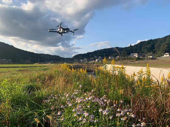 【ドローンと秋の草花】 河原に咲く野の花とMavic2pro