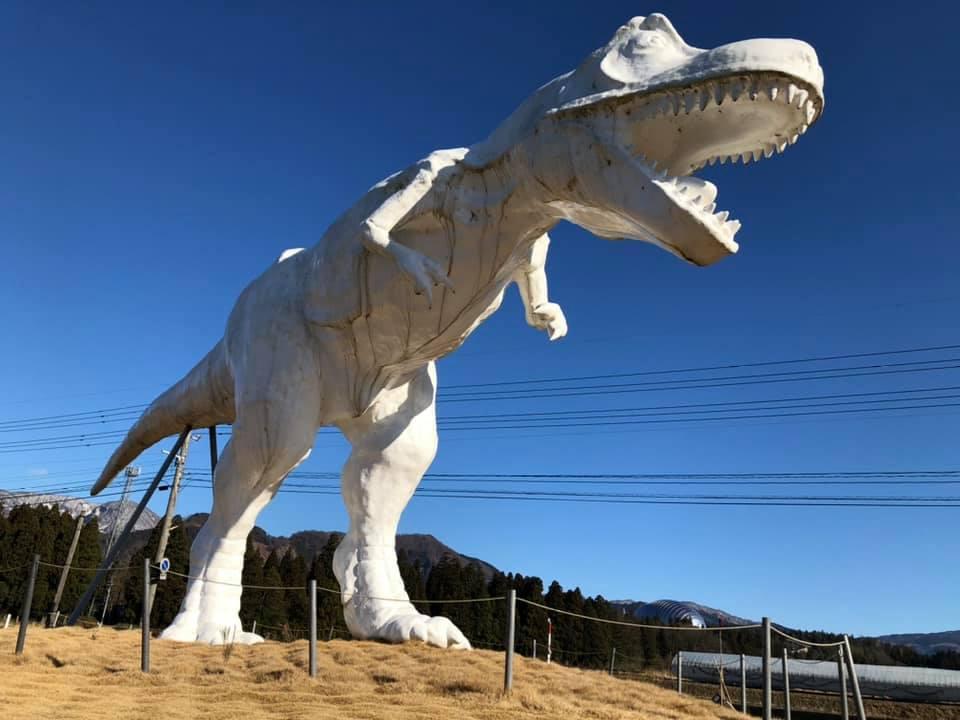 福井県勝山市滝波川沿いのドローン飛行ルートで恐竜と出逢う