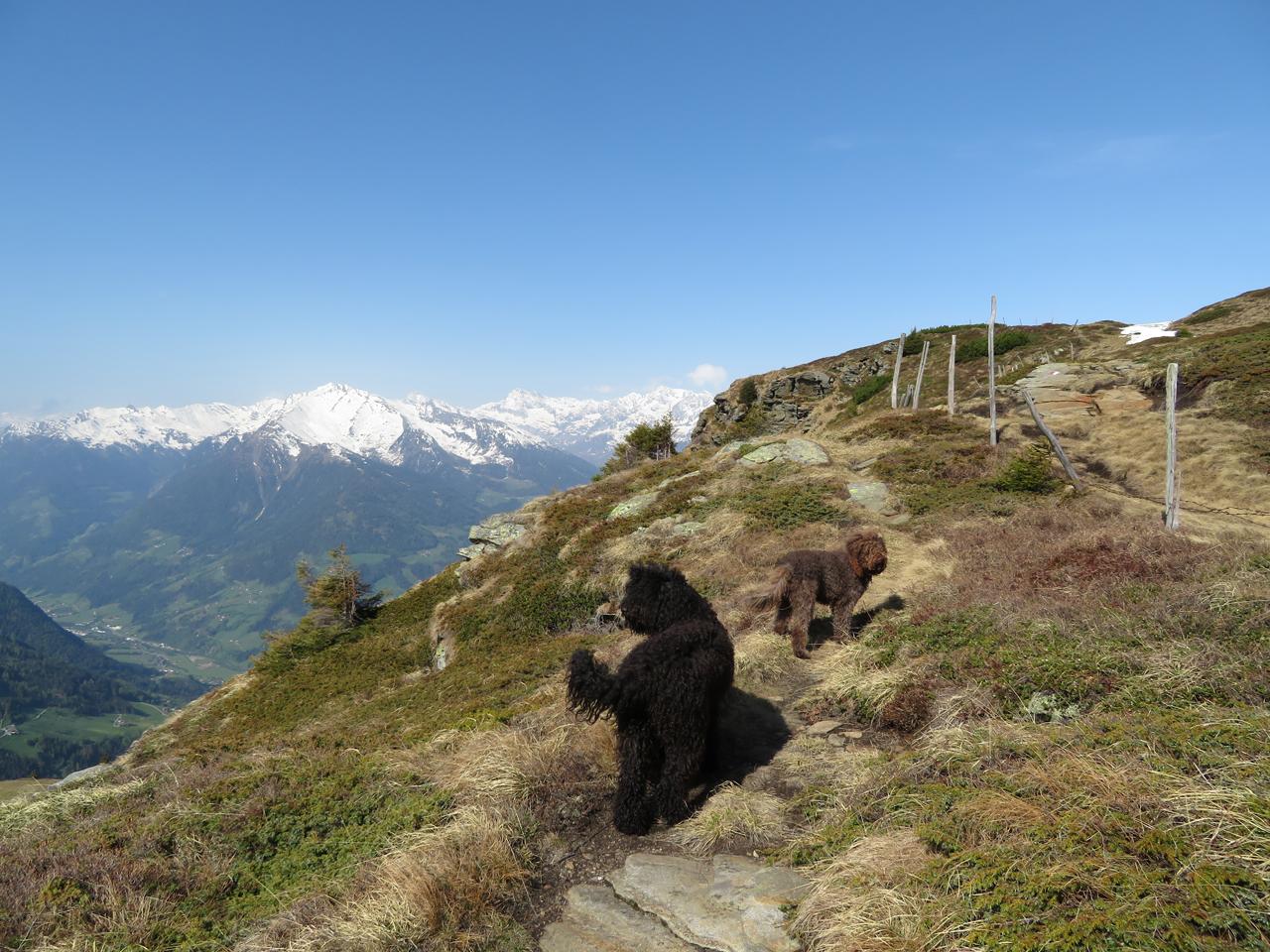 Unsere heutige kleine Wellnesswanderung führt uns über den Urweg Jaufenkamm zum Fleckner (2331m) in den südl. Stubaier Alpen im Jaufenpass Gebiet