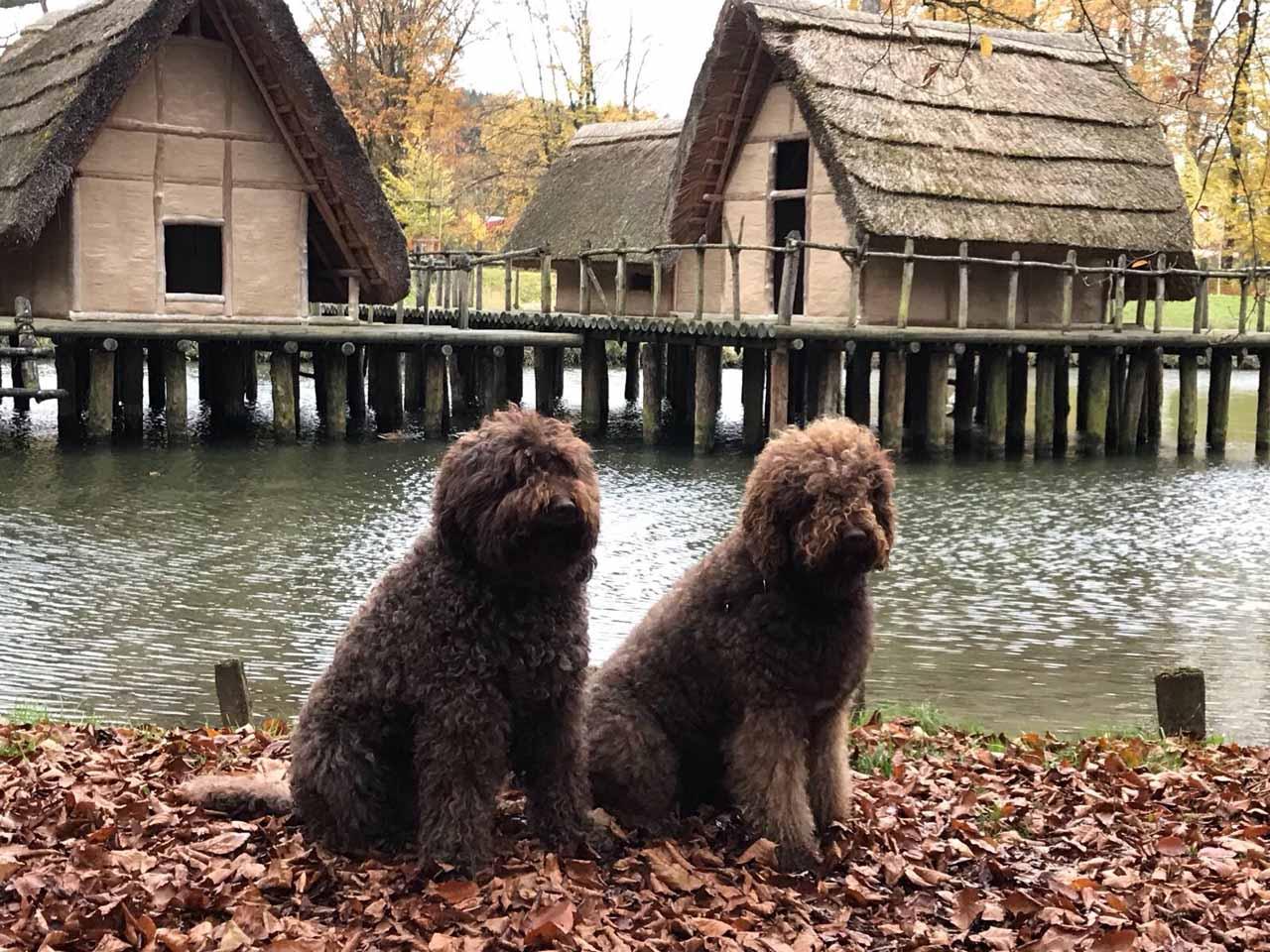 Glori und Gloris Oma Ginger besuchen den Bally-Park Schönenwerd