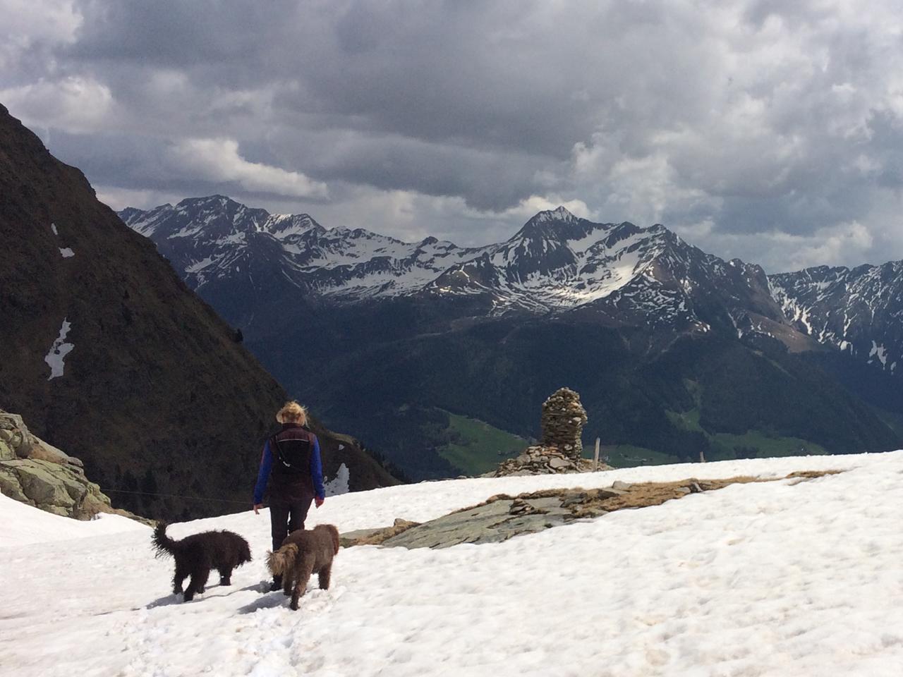 Ob Wasserstraßen, Schneefelder oder etwas ausgesetzte Pfade, Glori und Heloise haben es heute super gemacht. Eine wunderschöne, aussichtsreiche Tour zum noch nicht ganz Eis-und Schneefreien Obisee (2.150m) Nationalpark Texelgruppe