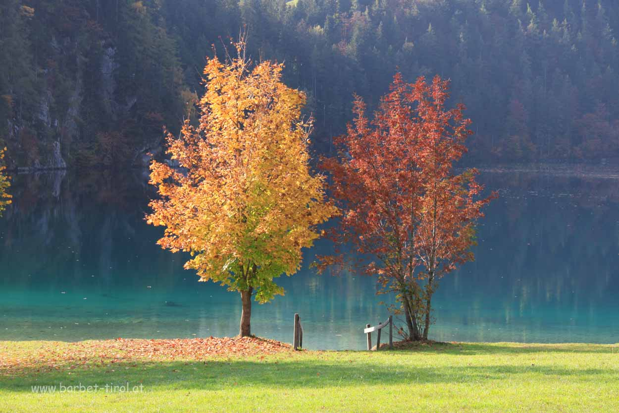 Schöner kann sich der Herbst nicht präsentieren als hier am Hintersteiner See