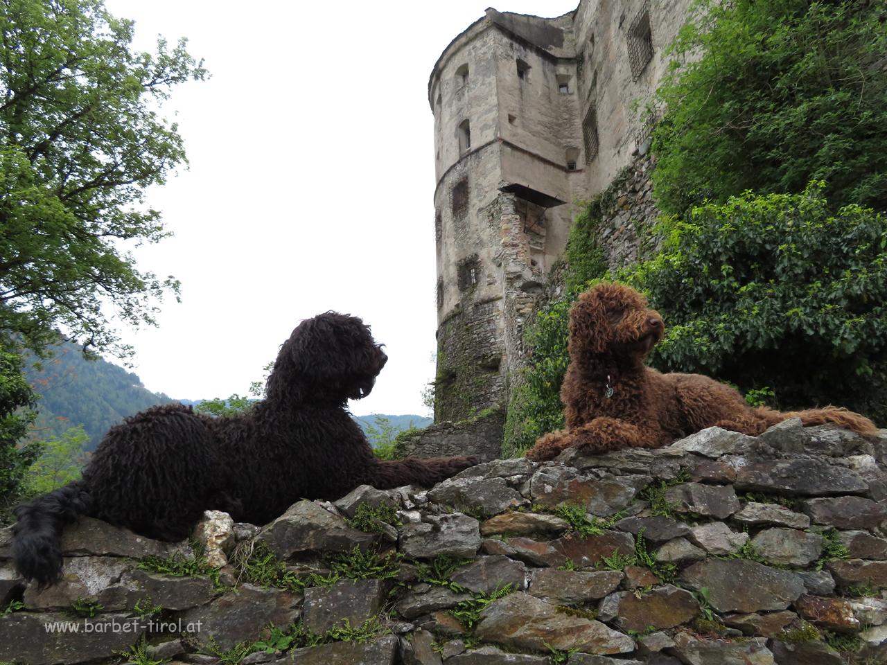 Zwei Burgwächterinnen......