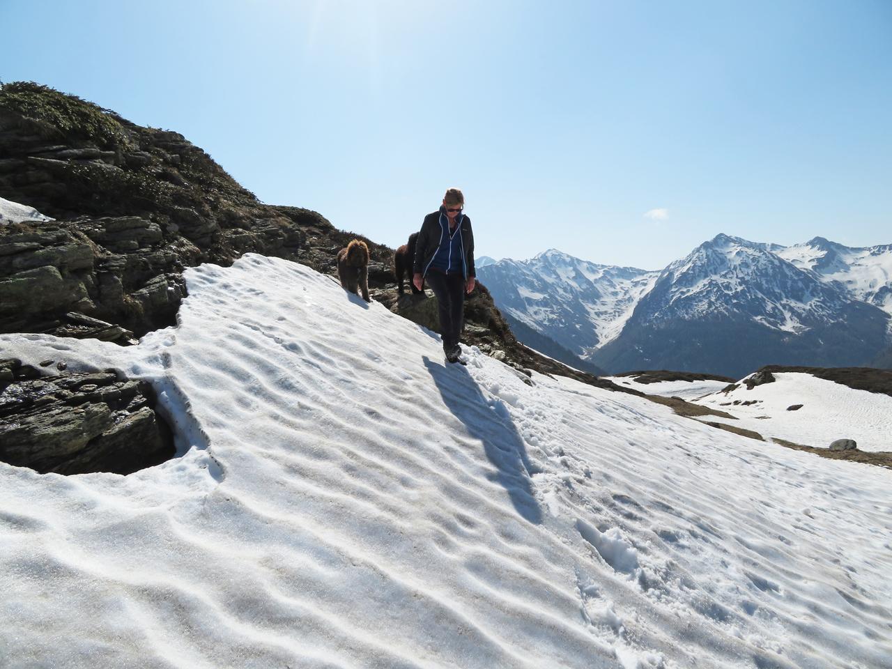 Ein paar knifflige Stellen auf den vielen Schneefeldquerungen. Glori Und Héloise machen es super :-)