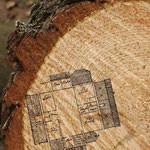 madera maciza laminada de la más alta calidad. proveniente de los bosques gestionados de Finlandia, madera de pino rojo finlandés, para la construcción de casas de madera de la más alta calidad y chalets de lujo construidos en toda la geografía española