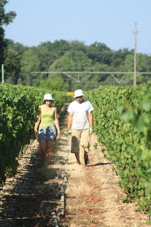 Jean Paul and his daughter checking the vineyard