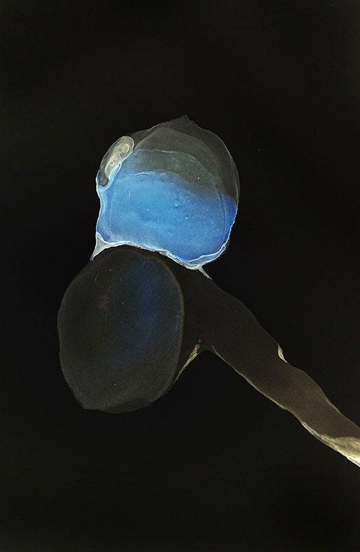 Leuchtkastenmotiv V