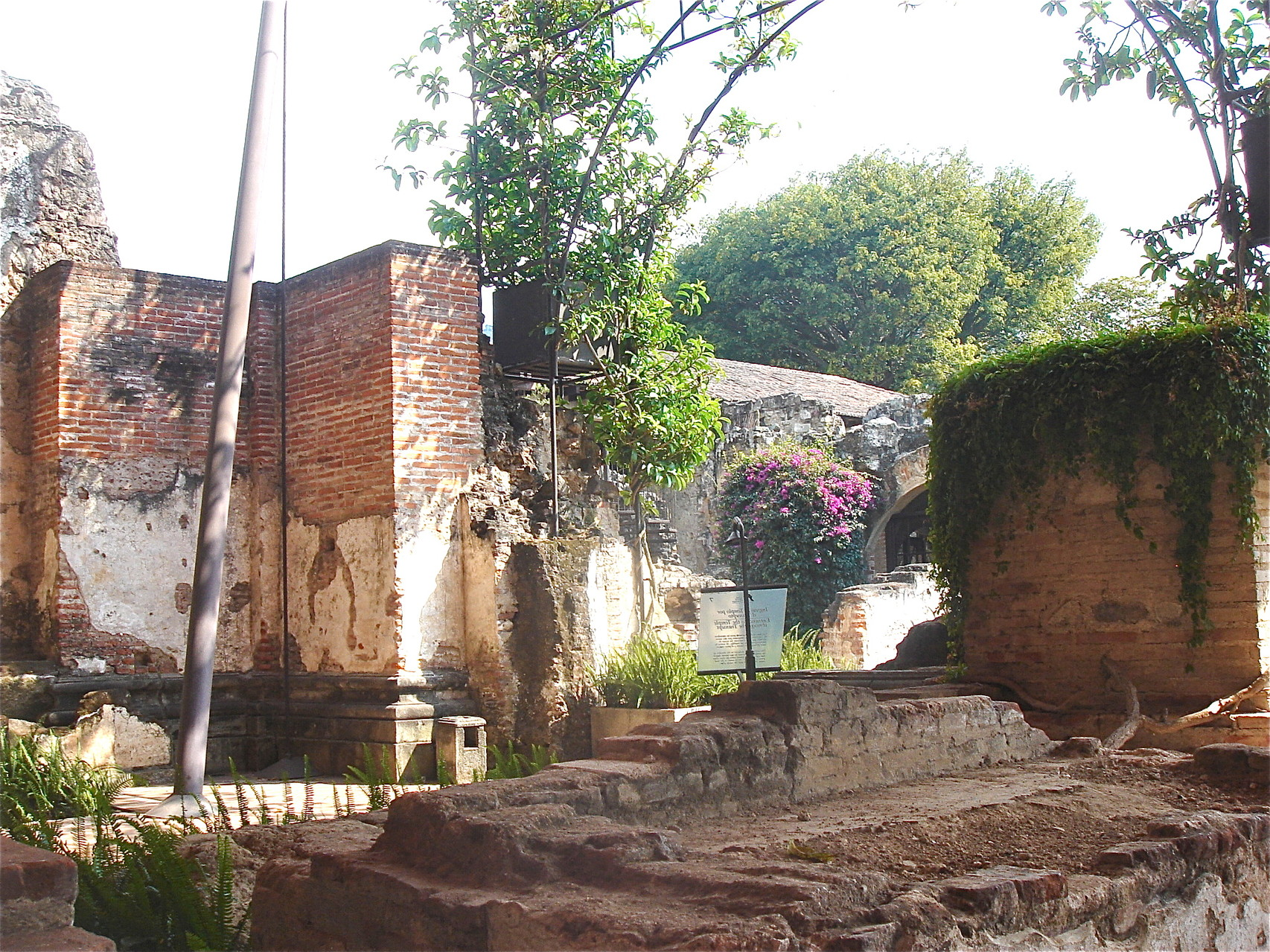 ruins of a church and nunnery