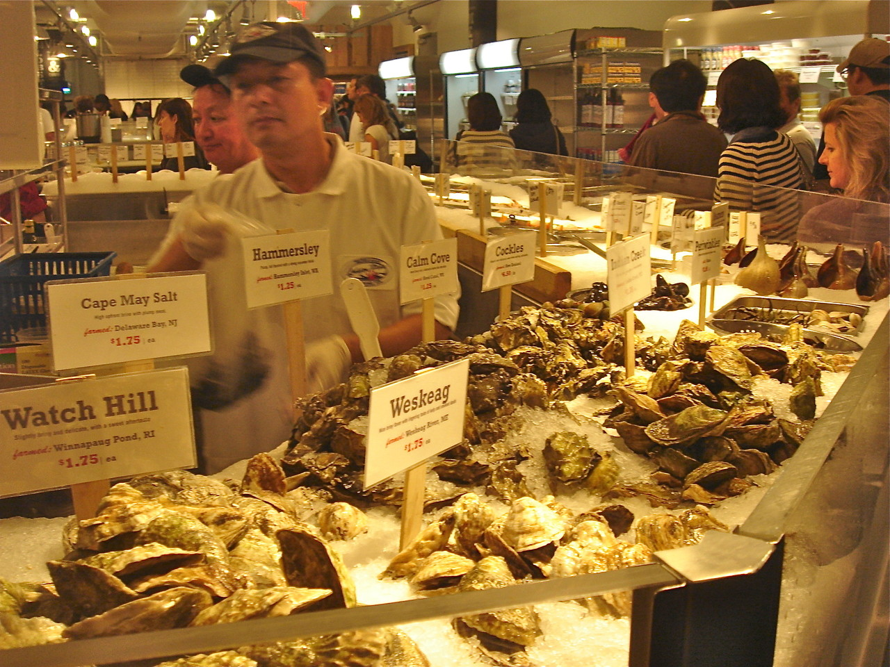 Oysters Galore...