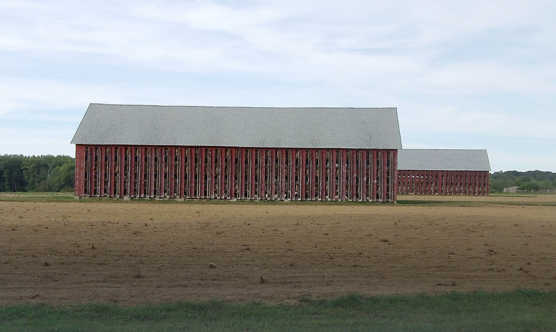 Tobacco barn near the Conn. River, September, 2015