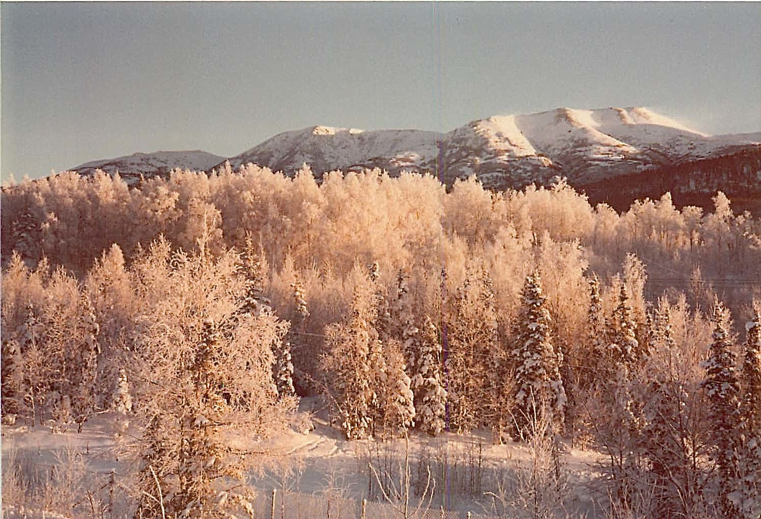 Alaska, Mt. McKinley in bkground 1979