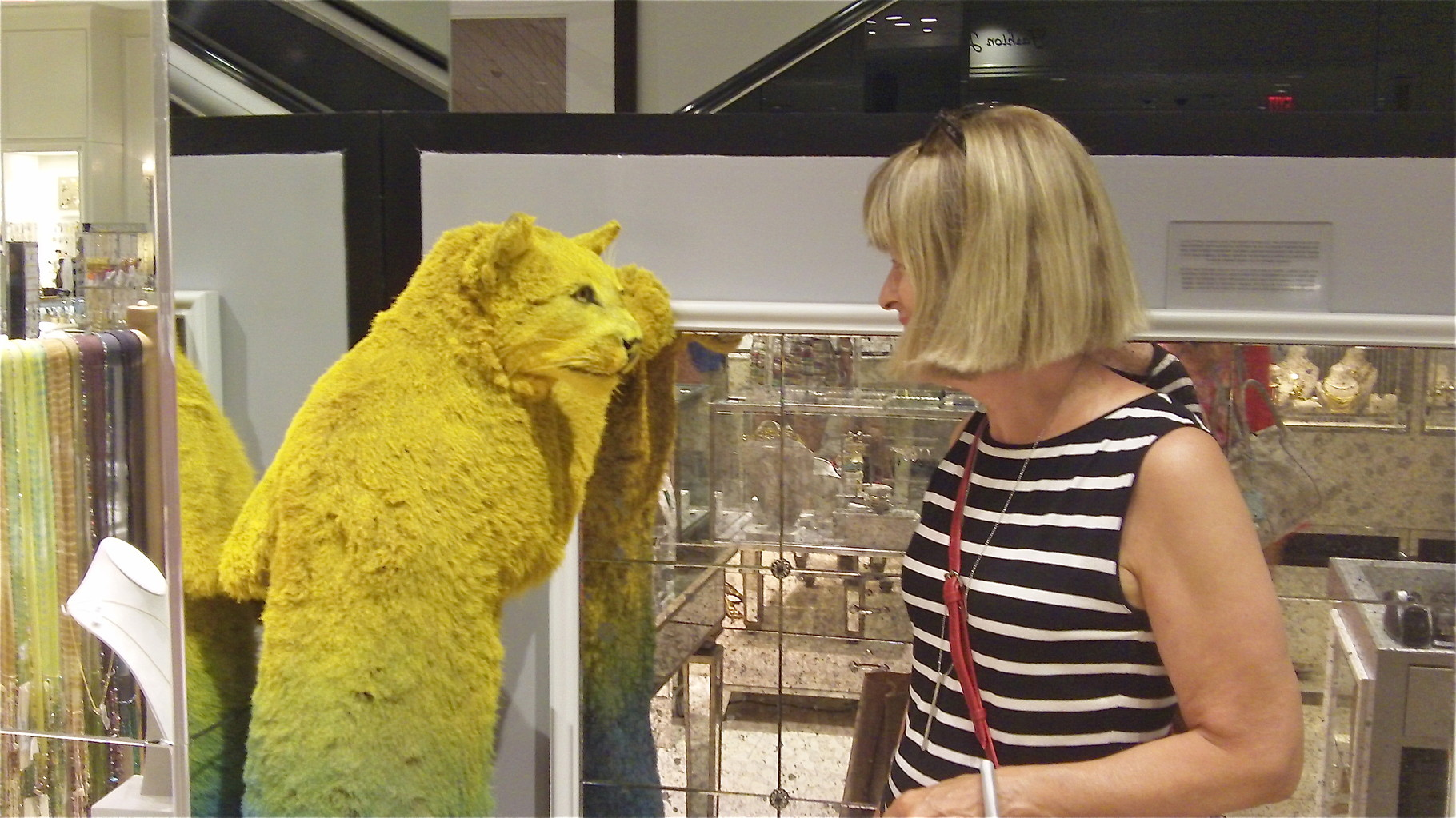 Nancy bonds with a cat at Bloomingdale's