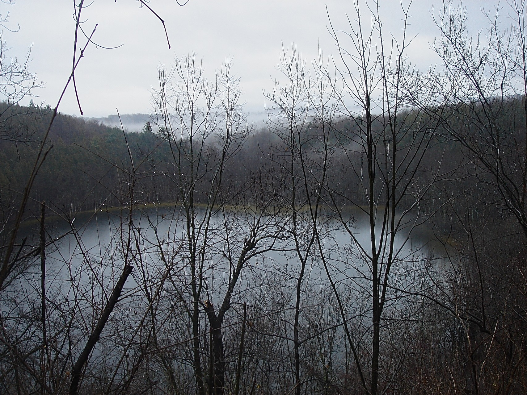 Clark Reservation, near Jamesville, Syracuse, NY 12-27-15
