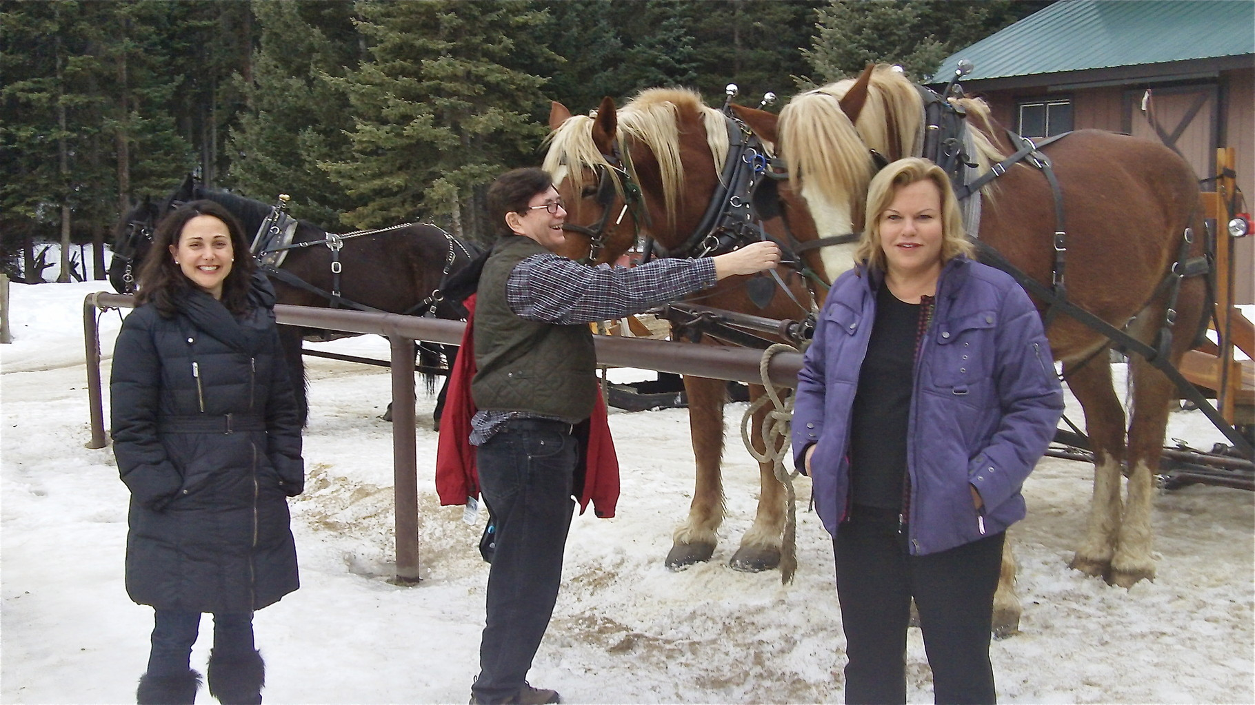 Allie Kagel, John, and Celeste in front of sleighride horses Pete and Mike!