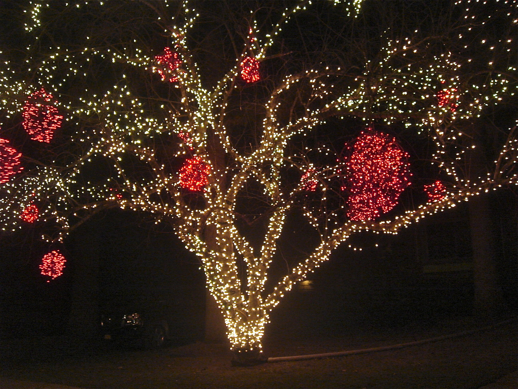 Apple Tree Lights, New Years Eve, Fayetteville, NY
