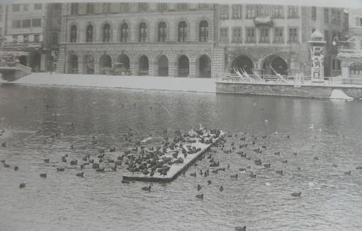 Winterfütterung auf der Reuss 1929 (Archiv OGL)