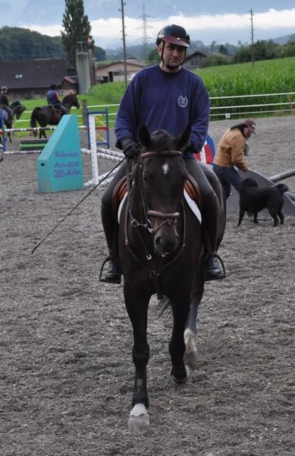 Donar (CH Warmblut 4 Jahre alt) und Stofi