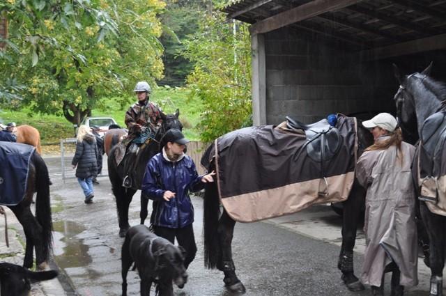 immer mehr Pferde und Reiter treffen ein