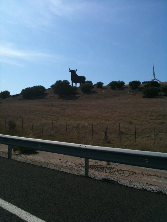 hasta luego Medina Sidonia