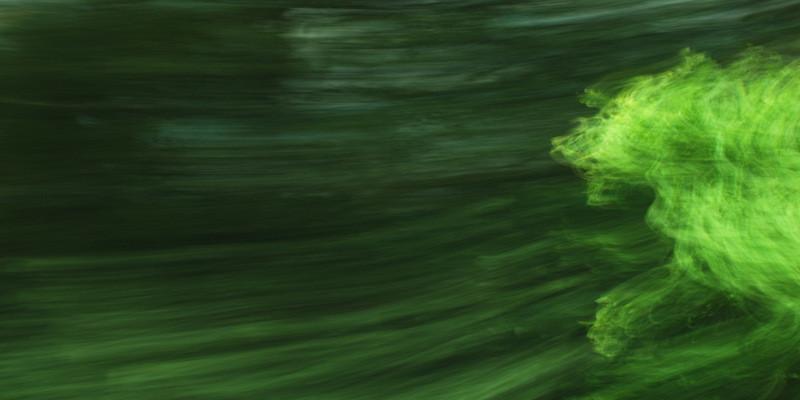 """""""Läufer"""", 2013 (aus der Serie """"Railjet"""")"""