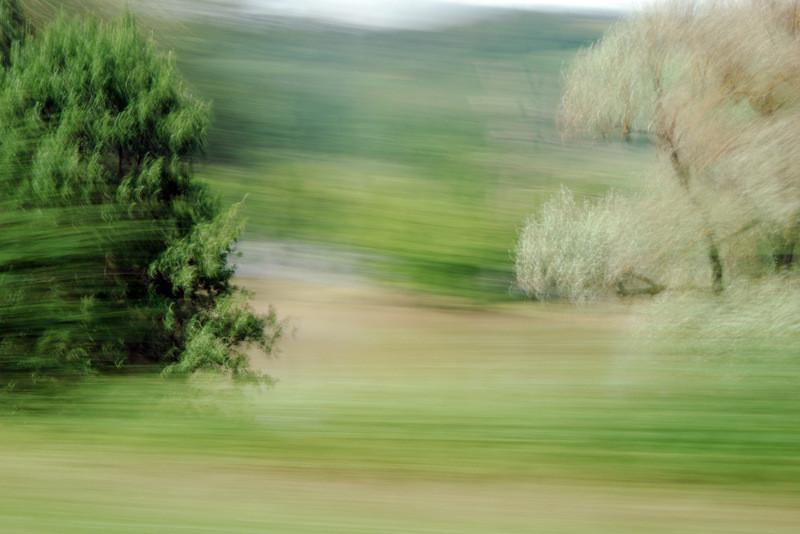 """Lothlorien #2"", 2013 (aus der Serie ""Railjet"")"