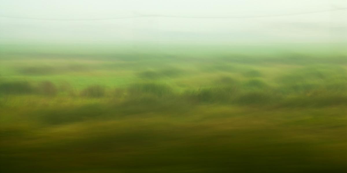 """""""Nebelmorgen"""", 2015"""