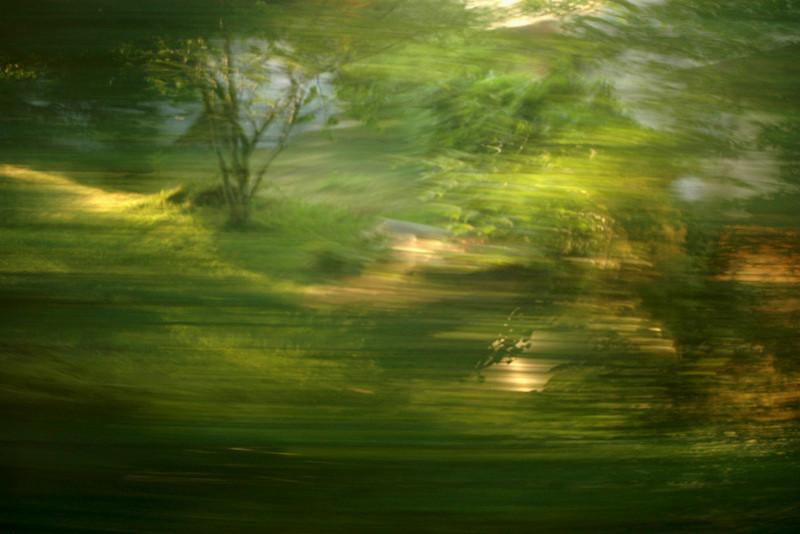 """""""Feenwald"""" (Der Weg ist das Ziel #22)"""