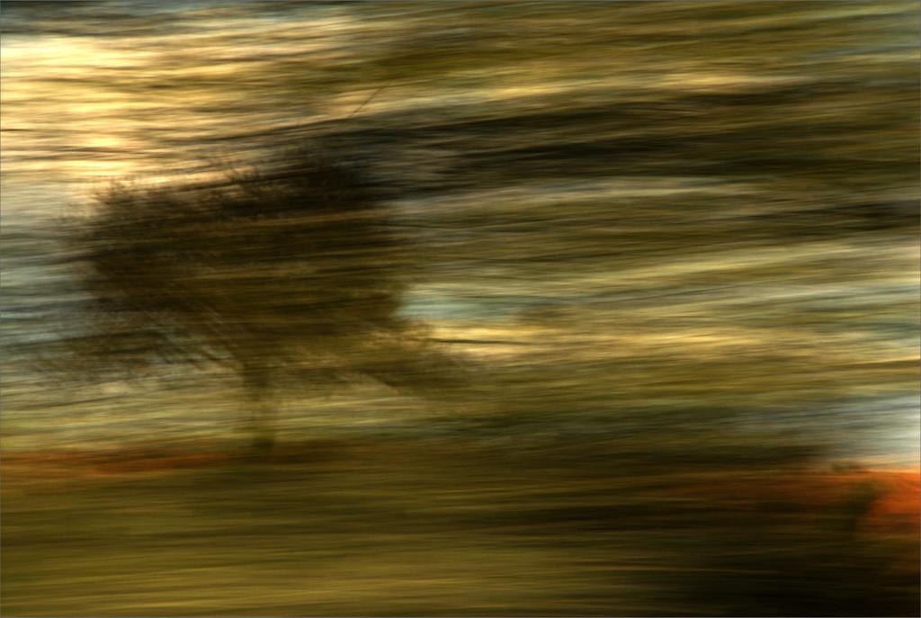 """""""Hinter dem Schleier"""" aus der Serie """"Der Weg zum Paradies"""", 2014"""