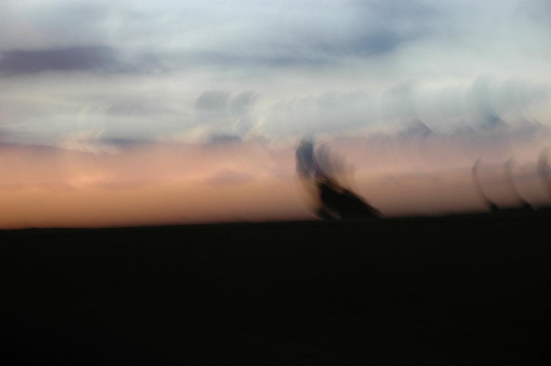"""""""Baummalerei"""", 2005 (aus """"Munich-Paris"""")"""