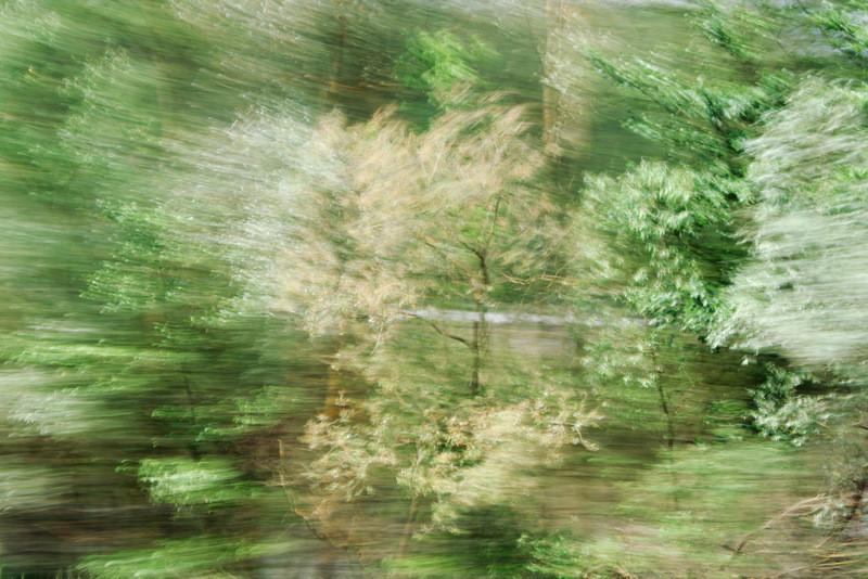 """Lothlorien #1"", 2013 (aus der Serie ""Railjet"")"