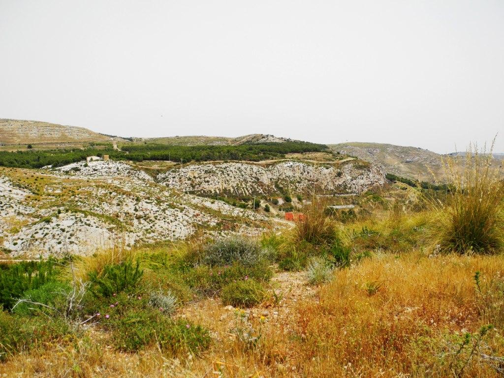 Die Steppenlandschaft verrät die Nähe zu Nordafrika