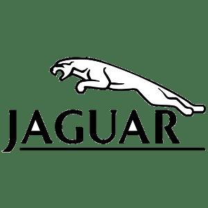 Jaguar Car Logo